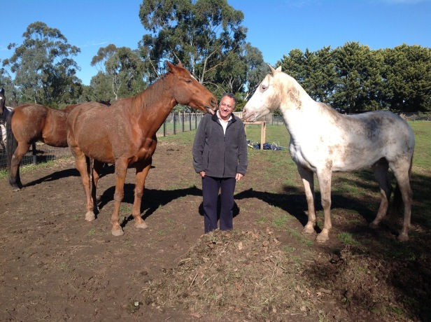 IPR License Peter Murray at horse sanctuary